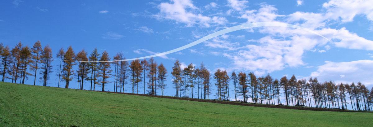 自然エネルギー推進風力・水力・太陽光発電